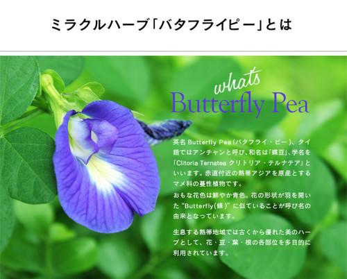 Lpbutterflypea_05