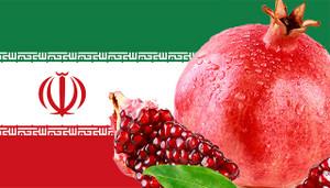Iranflagpomegranatesm