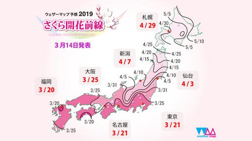 Sakura_front_1920x1080_day